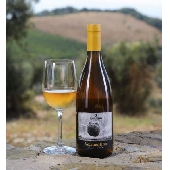 Sequerciani Vermentino IGT Toscana 2018 - N. 12 Bottles