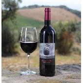 Sequerciani Pugnitello IGT Toscana 2017 - N. 12 Bottles