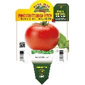 Runde Tomate - Orto mio