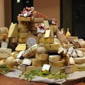 Verkostung von 6 italienischen Käsesorten