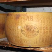 Ganze Form Parmigiano Reggiano
