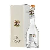 Distillato di Albicocche del Vesuvio - Capovilla