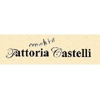 Logo Vecchia Fattoria Castelli