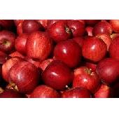 Red Delicious Apfel