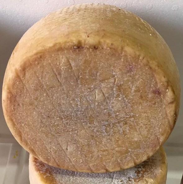 Pecorino Sardo: Hartk�se aus Schafsmilch von der Insel Sardinien-  Dolce di cardo - 12 monate gereift  - Azienda Agricola Mureddu Aru