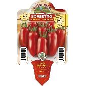 San Marzano Tomate - Orto mio
