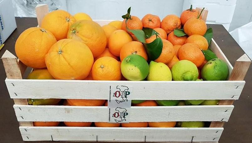 Kostprobe von Cassata mit Sizilianischen Zitrusfrucheten aus Ribera - Azienda Agr. Guaraggi 6 kg. Saftorangen 6 Kg. Orangen Fioroni Washington 3 kg. Klementinen 2 kg. Natürliche Zitronen